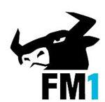 martin_fm1